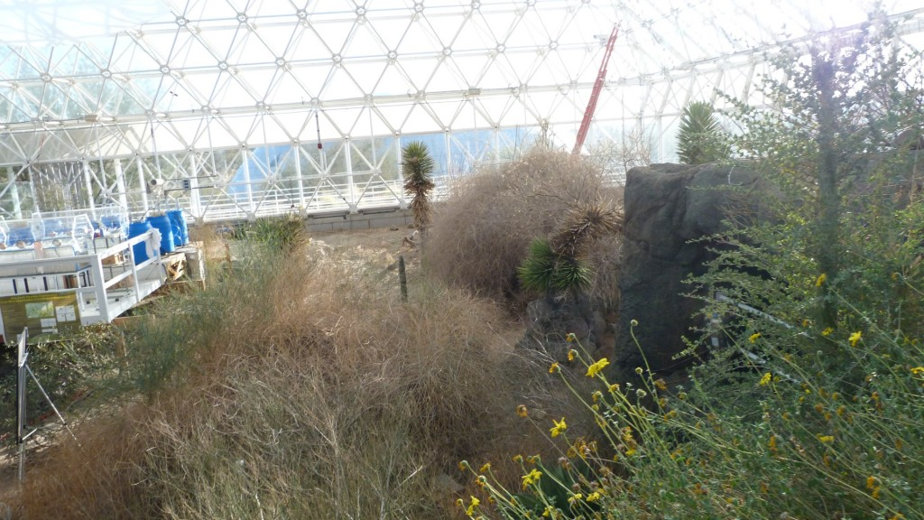 biosphere2 (10)