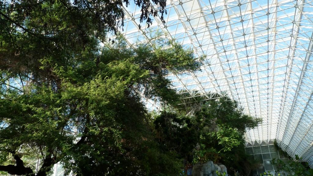 biosphere2 (19)