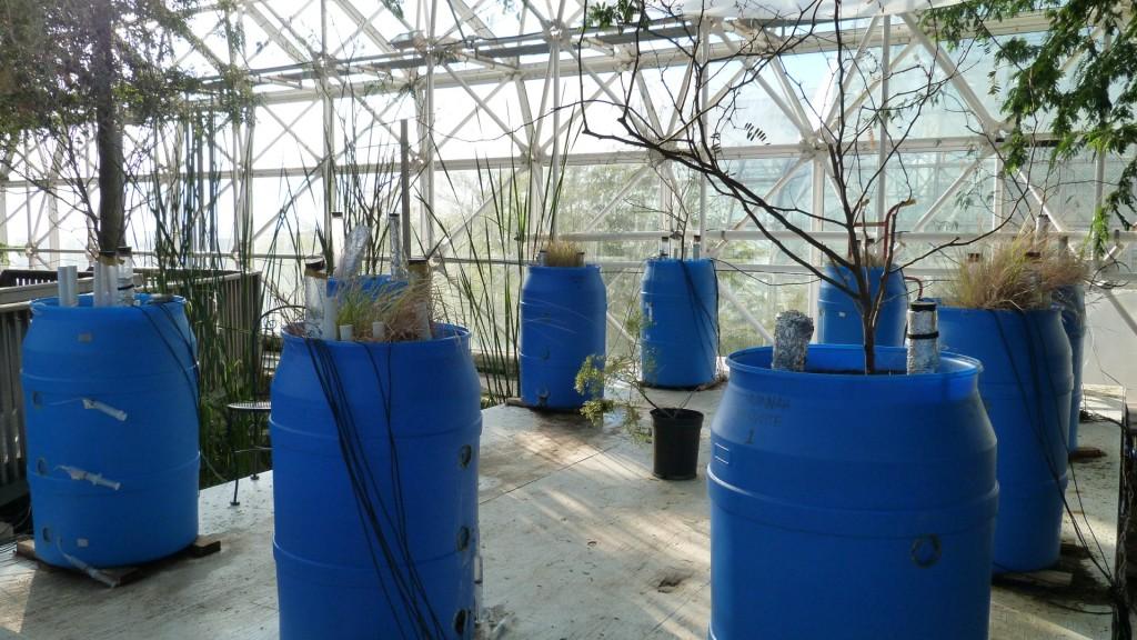biosphere2 (9)